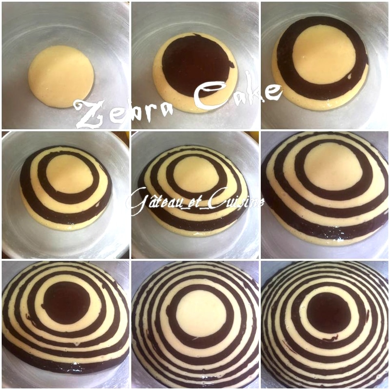 tuto cake zébré,zebra cake marbré chocolat