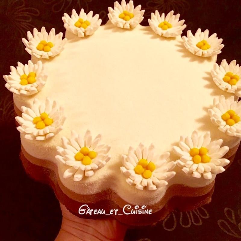 gâteau 3 mousses au chocolat -entremets 3 chocolats