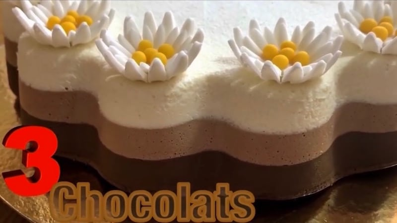 entremets au chocolat - trois mousse au chocolat