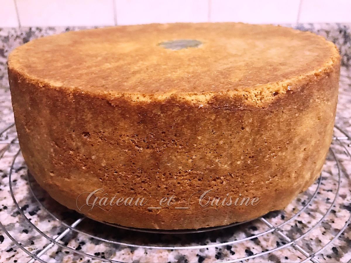 molly cake cake design